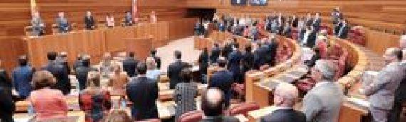 Las Cortes de Castilla y León rompen barreras por el autismo