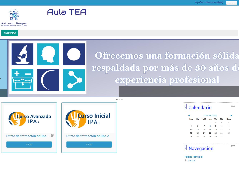 Arranca el Curso piloto on line del proyecto de formación de profesionales IPA+