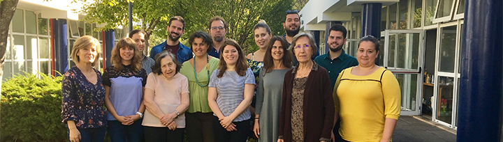 proyecto IVEA participantes